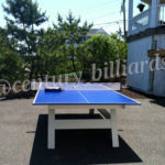 ping pong table frame support and height