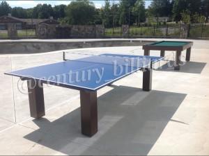 Ping Pong Custom 11