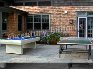 Ping Pong Custom 9