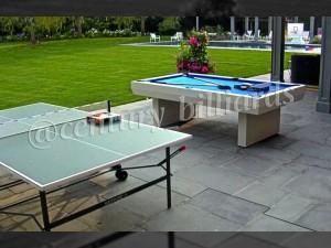Ping Pong Custom 8