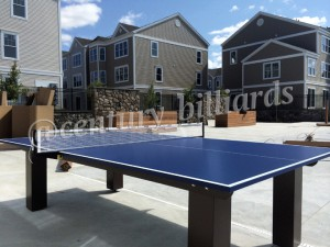 Ping Pong Custom 6