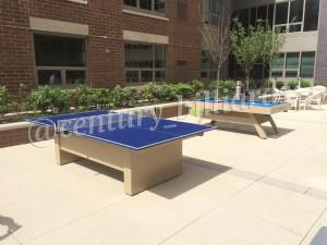 Ping Pong Custom 3